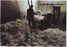 Blending the wool